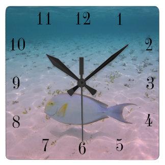 Tropical Maldives Beach Turquoise Sea Coral Fish Square Wall Clock