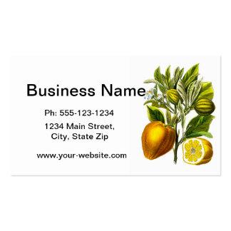 Tropical Orange Citrus no.3 Home Decor Gift Business Card