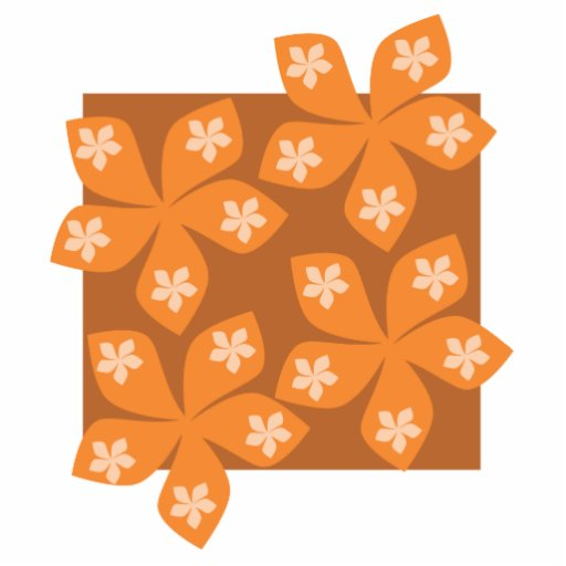 Tropical orange flowers on white. photo cut out