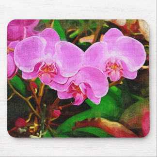 Tropical orchid - Walk in the Garden Mouse Pad