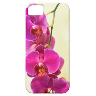 Tropical Orchids Case For The iPhone 5