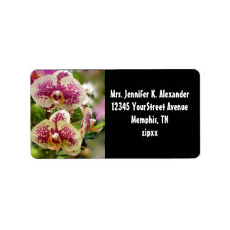 Tropical Orchids Label