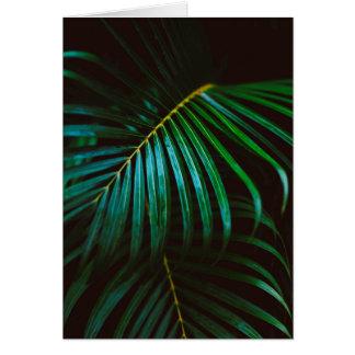 Tropical Palm Leaf Green Relaxing Meditative Card