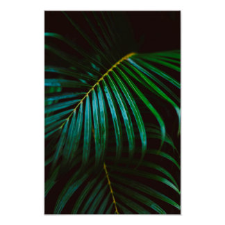 Tropical Palm Leaf Green Relaxing Meditative Poster