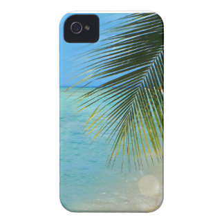 Tropical palm tree and Caribbean ocean iPhone 4 Cover