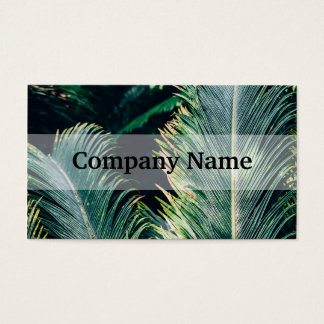 Tropical Palm Tree Leaves, Exotic Photograph Business Card