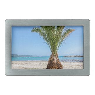 Tropical palm tree on sandy beach belt buckles