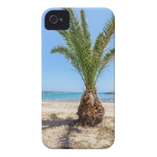 Tropical palm tree on sandy beach Case-Mate iPhone 4 cases