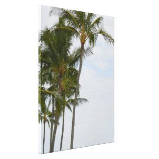 Tropical Palm Trees at Poipu Canvas Print