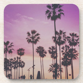Tropical Palm Trees Miami Los Angeles Venice Coaster