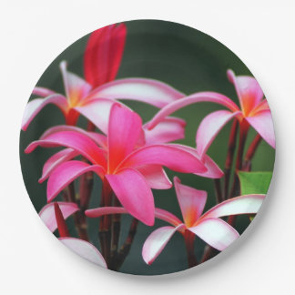 Tropical Paper Plates 9 Inch Paper Plate