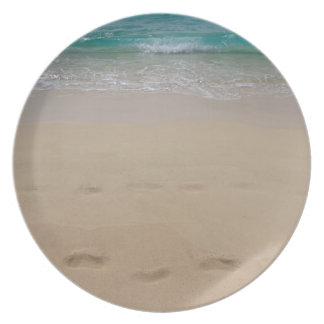 tropical paradise dinner plate