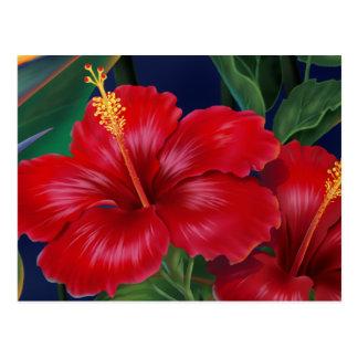 Tropical Paradise Hibiscus Postcard