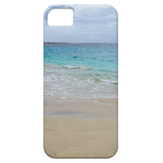 tropical paradise iPhone 5 case