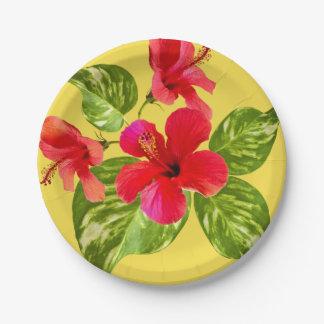 Tropical Paradise Paper Plates