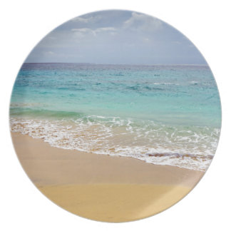 tropical paradise plate