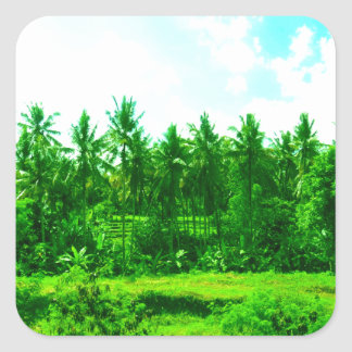 Tropical Paradise Square Sticker