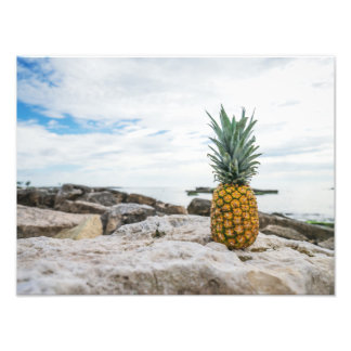 Tropical Pineapple at the Beach Photo