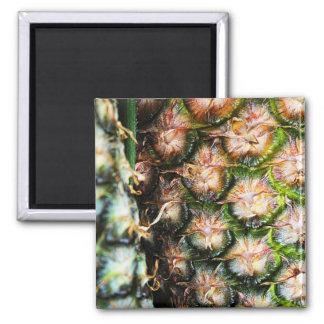 Tropical Pineapple Punch Texture Magnet