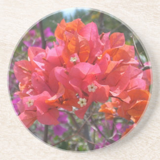 Tropical Pink Bougainvillea Coaster