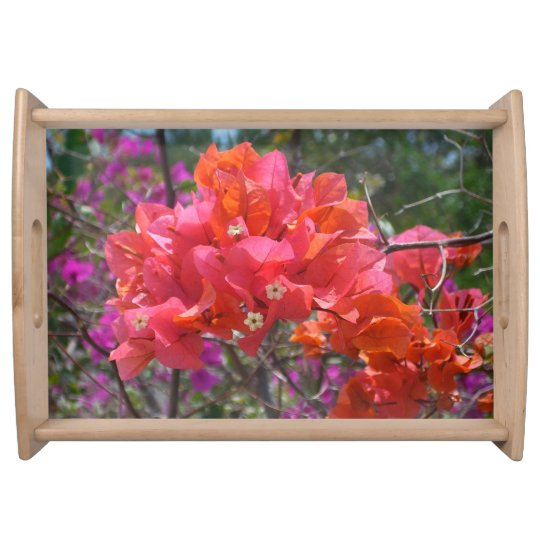 Tropical Pink Bougainvillea Serving Platter