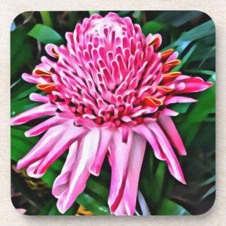 Tropical Pink Ginger Coaster