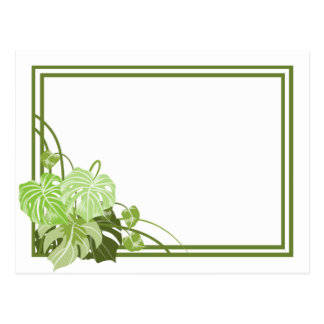 Tropical Plant Frame Postcard