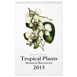 Tropical Plants 2015 Wall Calendars