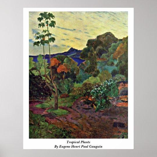 Tropical Plants By Eugene Henri Paul Gauguin Poster