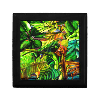 Tropical Plants Gift Box