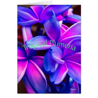 Tropical Plumeria Card