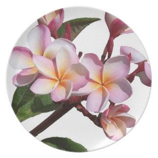 Tropical Plumeria Flower Floral Island Plate