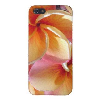 Tropical Plumeria Flowers  iPhone 5 Cases