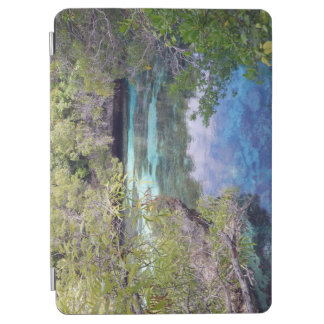 Tropical pool in New Caledonia iPad Air Cover