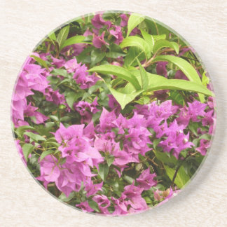 Tropical Purple Bougainvillea Coaster