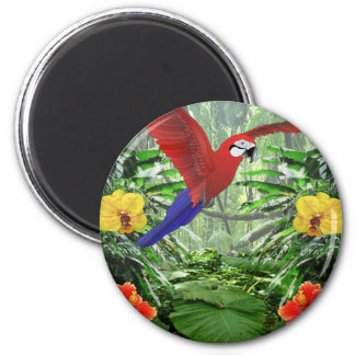Tropical Rain Forest Magnet