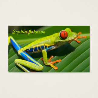 Tropical rainforest green red-eyed tree Frog Business Card