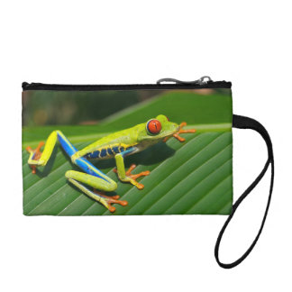 Tropical rainforest green red-eyed tree Frog Coin Purse