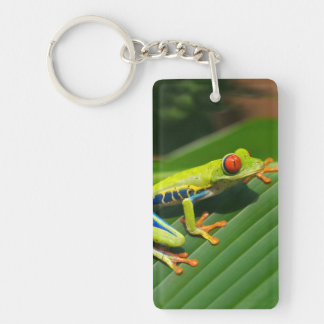 Tropical rainforest green red-eyed tree Frog Double-Sided Rectangular Acrylic Keychain
