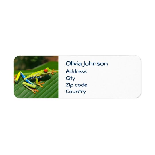 Tropical rainforest green red-eyed tree Frog Return Address Label