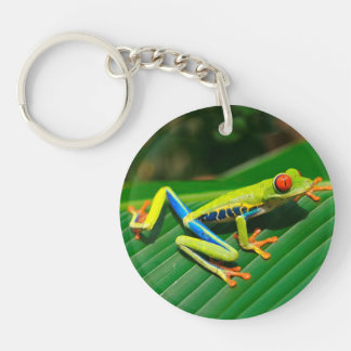 Tropical rainforest green red-eyed tree Frog Single-Sided Round Acrylic Keychain