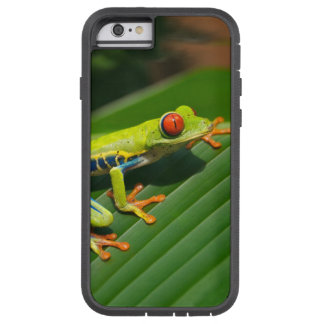 Tropical rainforest green red-eyed tree Frog Tough Xtreme iPhone 6 Case