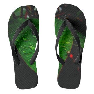 Tropical Rainstorm Leaf Photograph On Flip flops