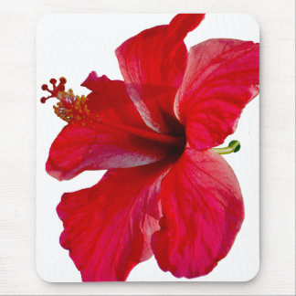 Tropical Red Hibiscus Flower Mouse Pad