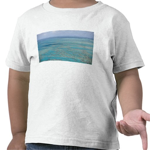 Tropical reef, Great Barrier Reef, Queensland, T Shirts