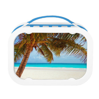 Tropical Relaxing Blue Beach Scene Lunchbox