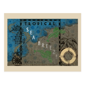Tropical Sea Breeze Seahorse and Fish Postcard