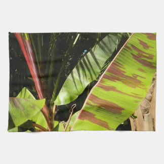 tropical splendor kitchen towel