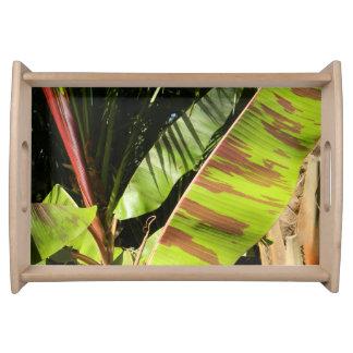 tropical splendor serving tray