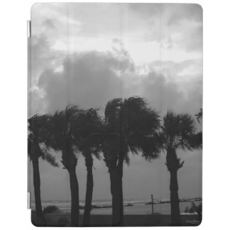 Tropical Stormy Skies Grayscale iPad Cover